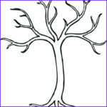 Tree Without Leaves Coloring Page Elegant Photos Tree Without Leaves Template Autumn In Preschool