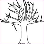 Tree Without Leaves Coloring Page New Images Free Bare Tree Template Download Free Clip Art Free Clip