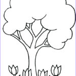 Tree Without Leaves Coloring Page Unique Photos Tree Without Leaves Drawing At Getdrawings