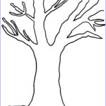 Tree Without Leaves Coloring Page Unique Photos Without Leaves Tree Coloring Page Tree