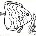 Tropical Fish Coloring Pages Beautiful Collection Tropical Fish Coloring Pages