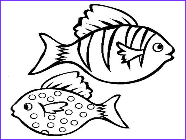 Tropical Fish Coloring Pages Best Of Stock Realistic Aquarium Fish Coloring Page Free & Printable