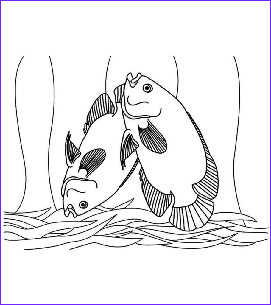 tropical fish coloring pages for your toddler