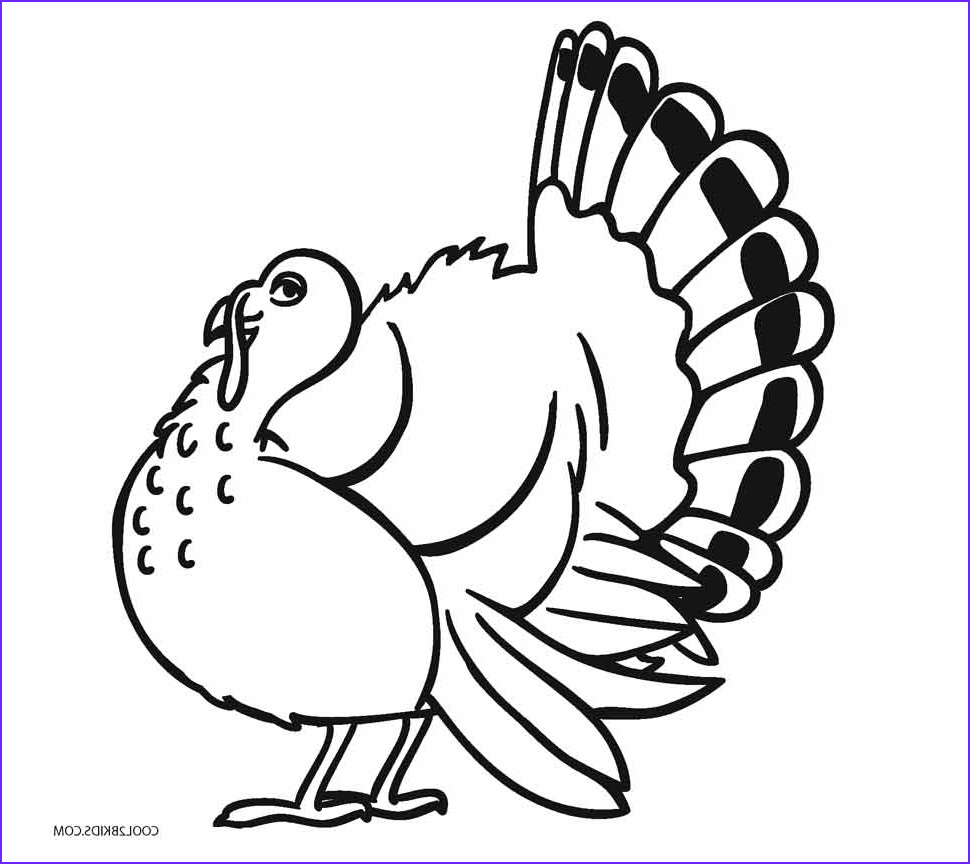 Turkey Coloring Pictures Best Of Photos Free Printable Turkey Coloring Pages for Kids