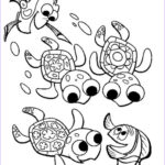 Turtle Coloring Book Awesome Photography Print & Download Turtle Coloring Pages As The