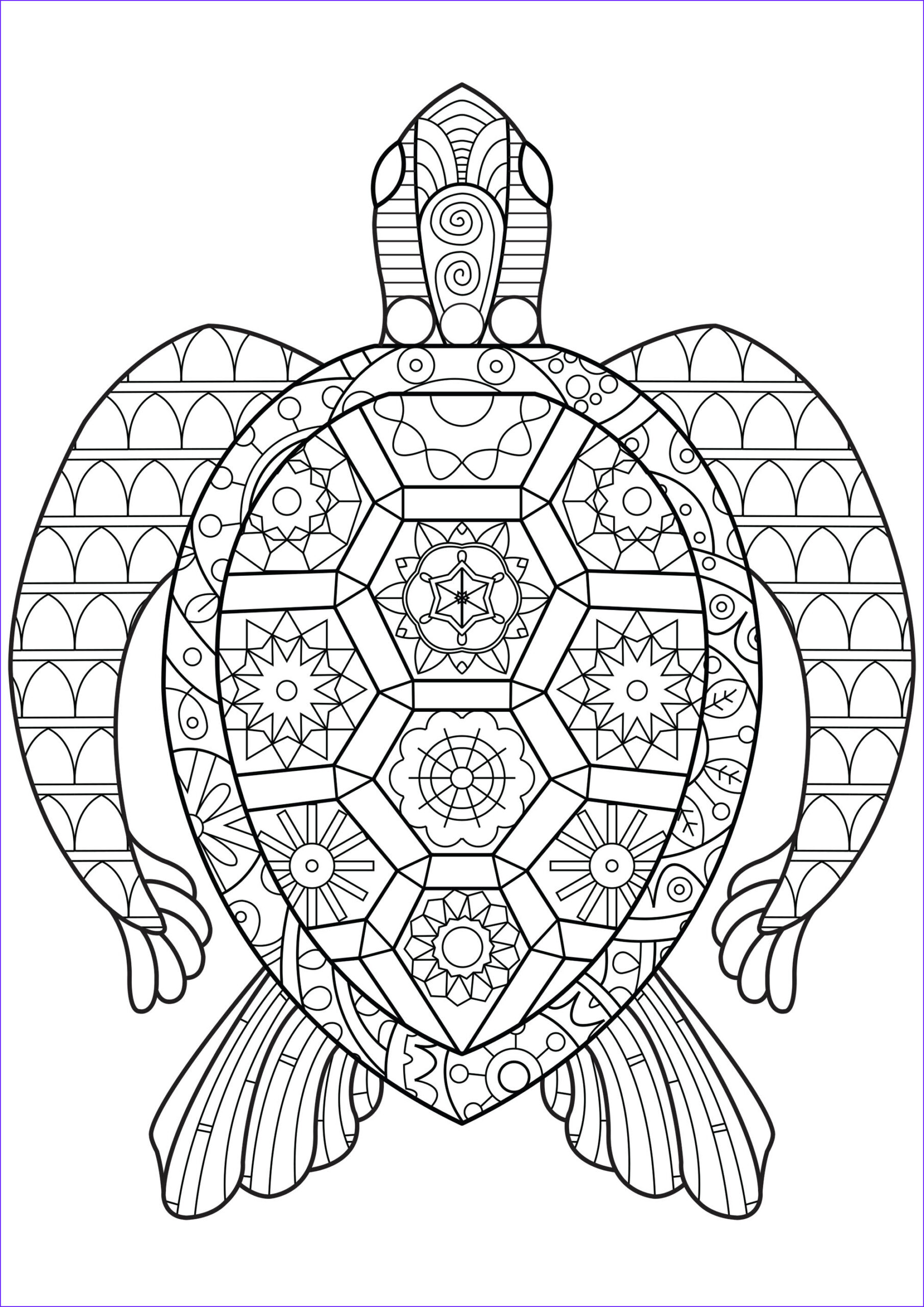 Turtle Coloring Book Beautiful Photos Zen Turtle Turtles Adult Coloring Pages