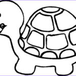 Turtle Coloring Book Best Of Photography Free Printable Turtle Coloring Pages For Kids