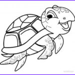 Turtle Coloring Book Cool Stock Printable Sea Turtle Coloring Pages For Kids