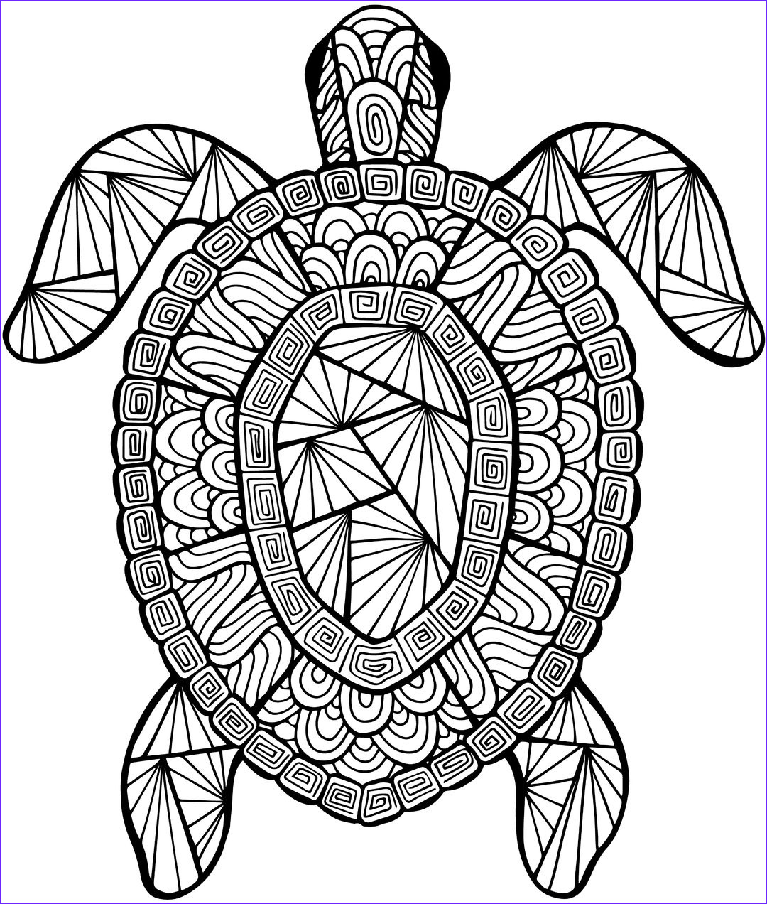 Turtle Coloring Book Elegant Images Detailed Sea Turtle Advanced Coloring Page