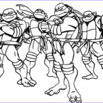 Turtle Coloring Book Luxury Collection Ninja Turtles Cartoon Coloring Page