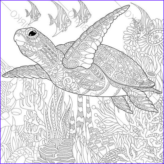 Turtle Coloring Books Awesome Images Adult Coloring Page Sea Turtle Zentangle Doodle Coloring