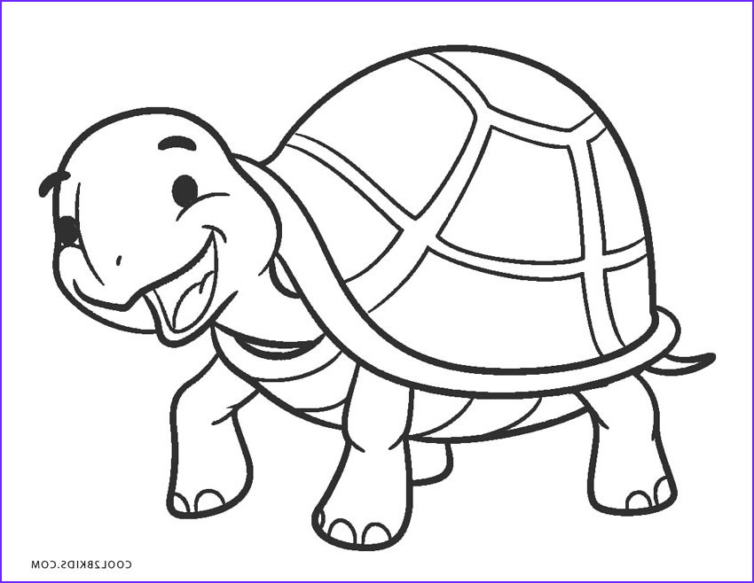 Turtle Coloring Books Best Of Gallery Free Printable Turtle Coloring Pages for Kids