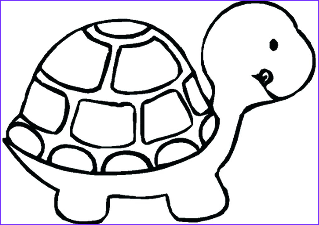 Turtle Coloring Books Cool Photos Pets Coloring Pages Best Coloring Pages for Kids