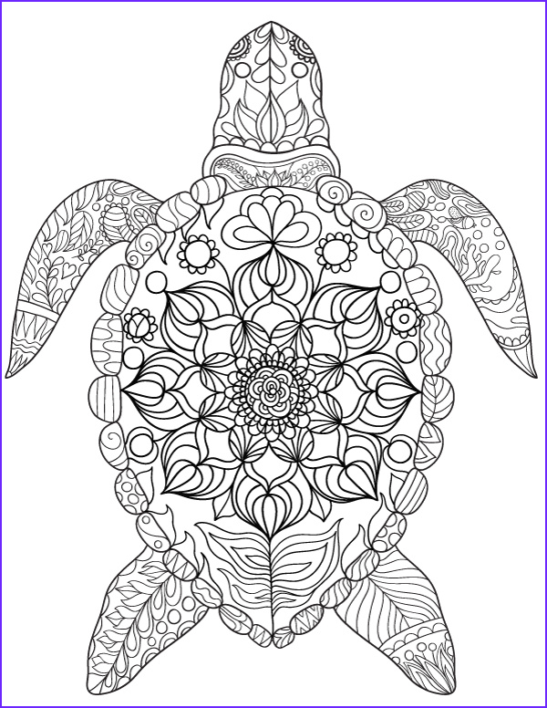 Turtle Coloring Books Cool Photos Sea Turtle Adult Coloring Page