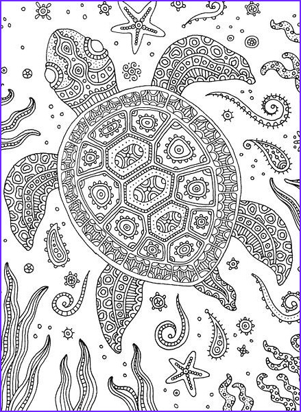Turtle Coloring Books Inspirational Images 936 Best ♋adult Colouring Under the Sea Fish Mermaids