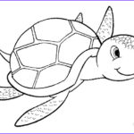 Turtle Coloring Pages Best Of Stock Printable Sea Turtle Coloring Pages for Kids
