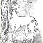 Unicorn Coloring Book Awesome Image Realistic Unicorn Coloring Pages Coloring Home
