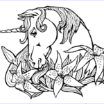 Unicorn Coloring Book Inspirational Stock Print & Download Unicorn Coloring Pages For Children
