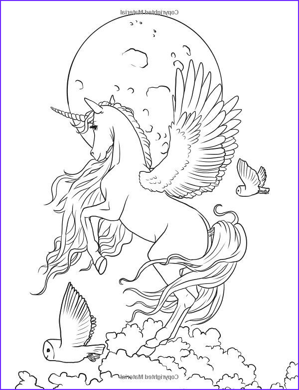 Unicorn Coloring Pages for Adults Inspirational Image Fairy Art Adult Coloring Book