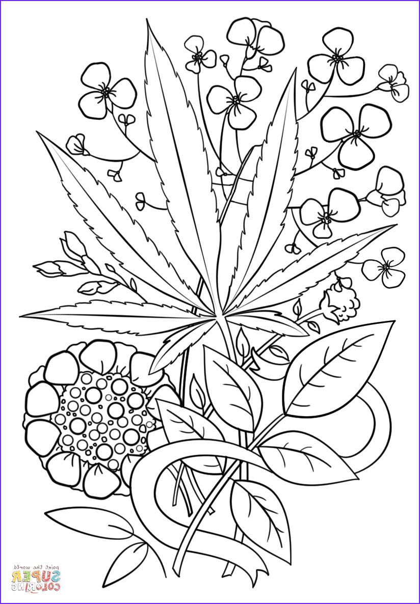 Weed Coloring Books New Photography Trippy Weed Coloring Page