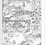 Winter Coloring Pages For Adults Elegant Image 17 Best Images About Embroidery And Patterns On Pinterest