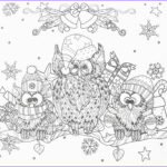 Winter Coloring Pages For Adults Elegant Photography Winter Owls Adult Coloring Page