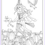 Witch Coloring Pages For Adults New Photos 269 Best Images About Witch Coloring On Pinterest