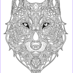 Wolf Coloring Pages For Adults Awesome Photography Wolf Design Pesquisa Google Doodles