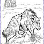 Wolf Coloring Pages For Adults Beautiful Photography 43 Best Animals Coloring Pages For Adults Images On