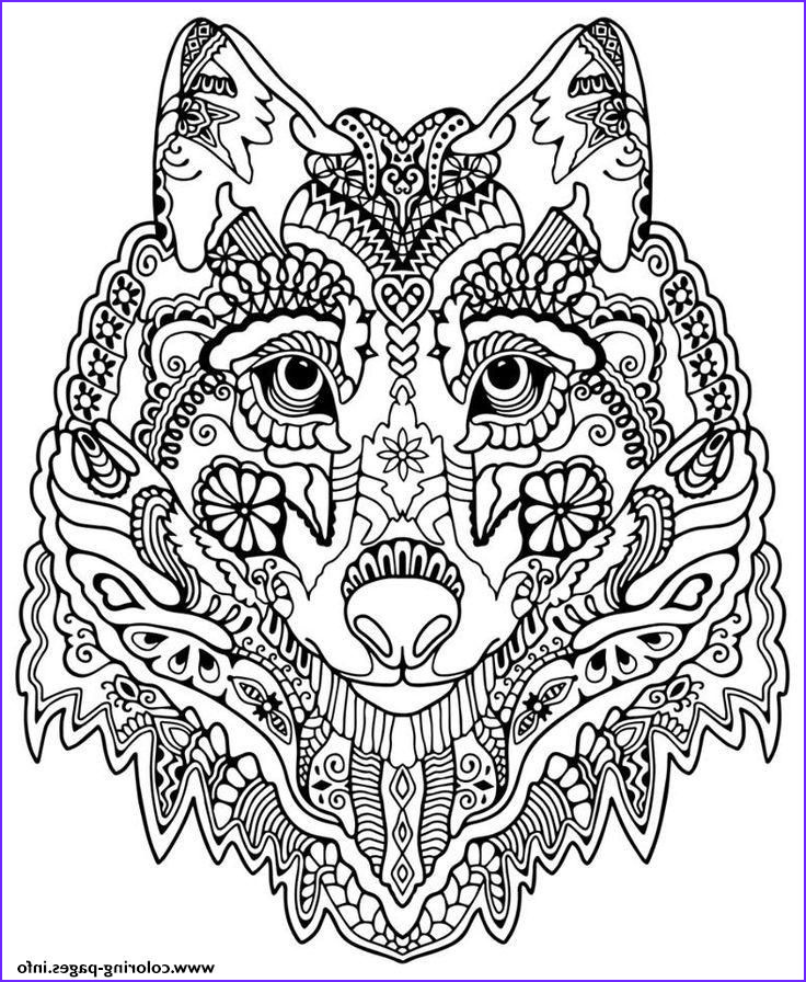 Wolf Coloring Pages for Adults Cool Collection Print Cute Wolf Adult Mandala Grown Up Coloring Pages Free