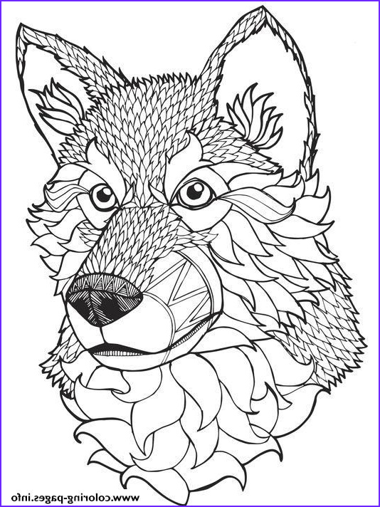 Wolf Coloring Pages for Adults Unique Gallery Print High Quality Wolf Mandala Adult Coloring Pages
