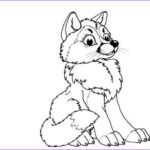 Wolf Coloring Pages Inspirational Photos Print & Download Wolf Coloring Pages Theme