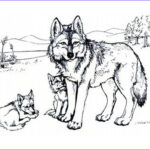Wolf Coloring Pages Printable Unique Photos Print & Download Wolf Coloring Pages Theme