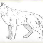 Wolf Coloring Pictures Cool Stock Free Printable Wolf Coloring Pages For Kids