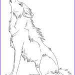 Wolf Coloring Pictures Luxury Collection Top 15 Free Printable Wolf Coloring Pages Line