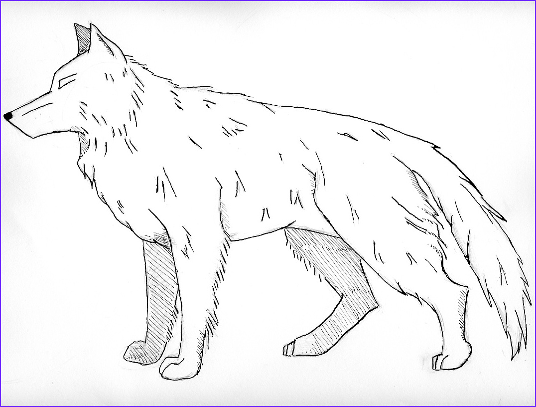 Wolves Coloring Book Inspirational Image Free Printable Wolf Coloring Pages for Kids