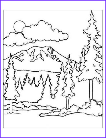 Woodland Animals Coloring Pages Beautiful Photos Coloring Pages Coloring and forests On Pinterest