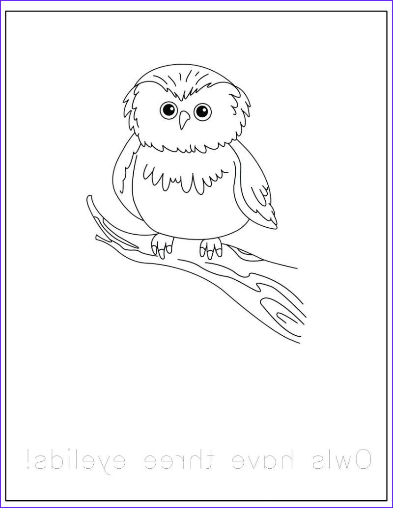 free forest animals coloring pages with