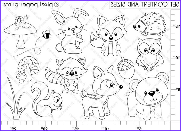 Woodland Animals Coloring Pages New Images Digital Stamps Woodland Animals Digital Stamps
