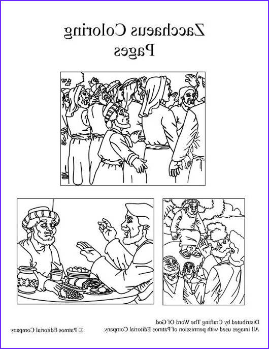 Zaccheaus Coloring Page Best Of Images Jesus Rolon Crafting the Word God Google