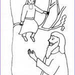 Zaccheaus Coloring Page Cool Photos Bible Story Coloring Page Jesus And Zacchaeus