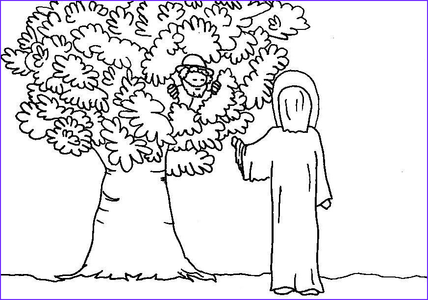 Zaccheaus Coloring Page Cool Photos Coloring Pages Zaccheus Zacchaeus Coloring Pages