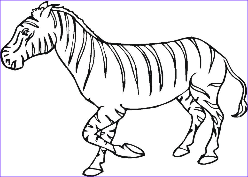 zebra coloring pages for kids