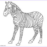 Zebra Coloring Pages Beautiful Photos Free Printable Zebra Coloring Pages For Kids