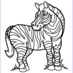 Zebra Coloring Pages Best Of Collection Zebra Coloring Pages Download And Print Zebra Coloring Pages