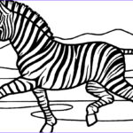 Zebra Coloring Pages Luxury Stock Free Printable Zebra Coloring Pages For Kids