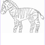 Zebra Coloring Pages New Collection Free Printable Zebra Coloring Pages For Kids