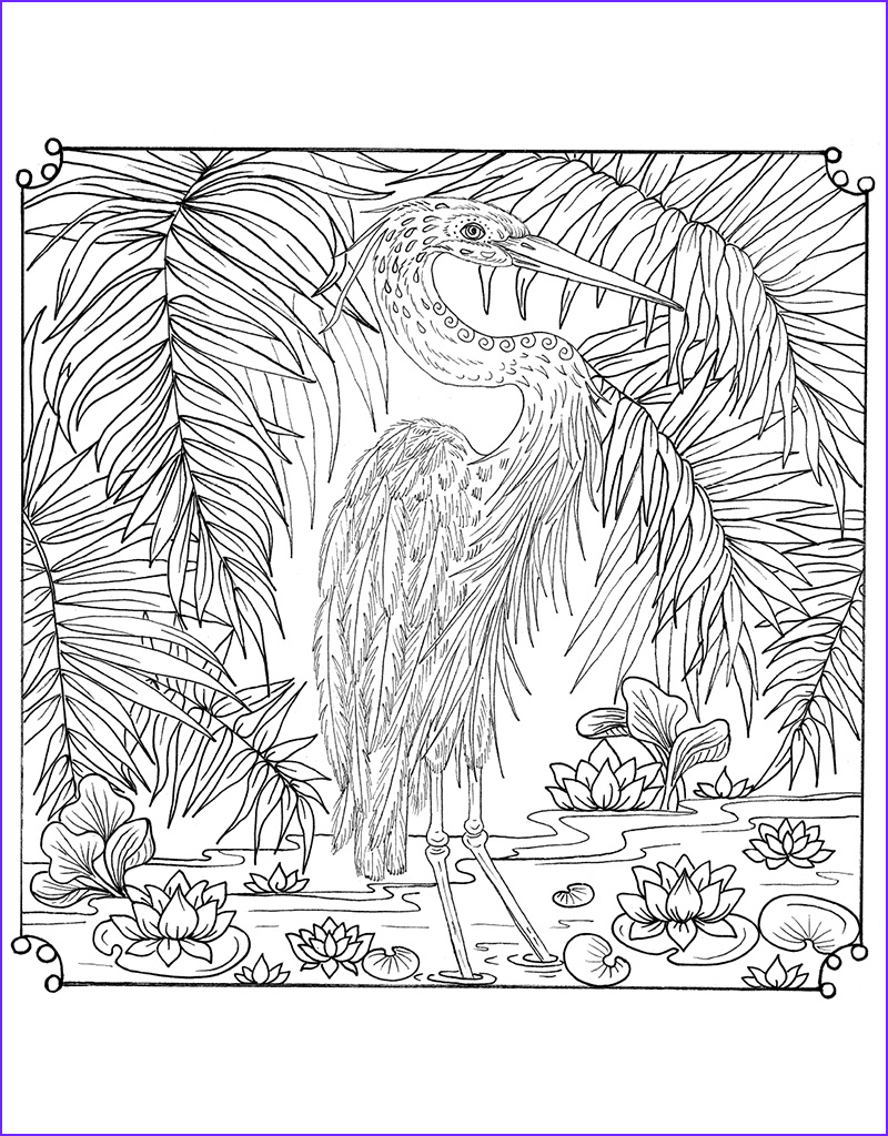 Zendoodle Coloring Awesome Stock Zendoodle Coloring Tropical Paradise