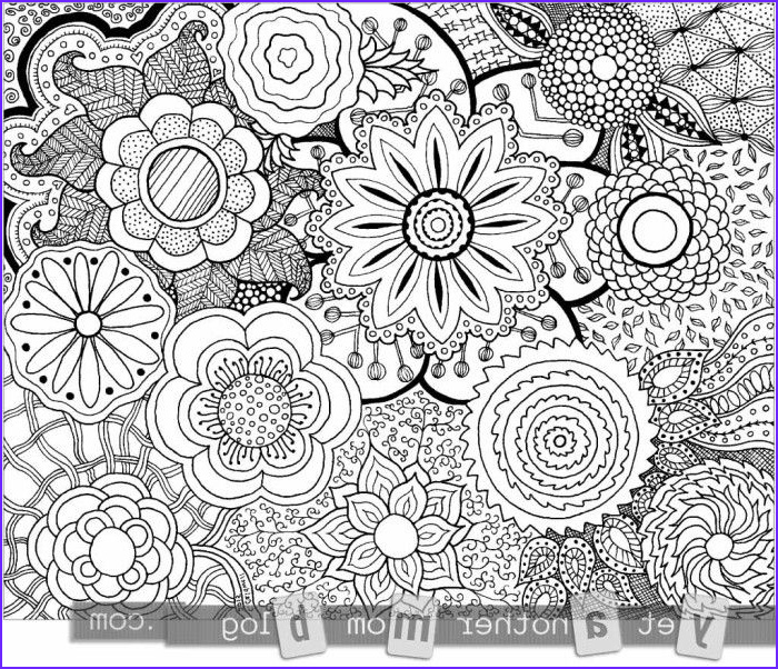Zentangle Coloring Books Unique Photography More Coloring Pages for Adults Zentangle Flowers