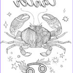 Zodiac Coloring Book Unique Photos 218 Best Zodiac Coloring Pages For Adults Images On Pinterest